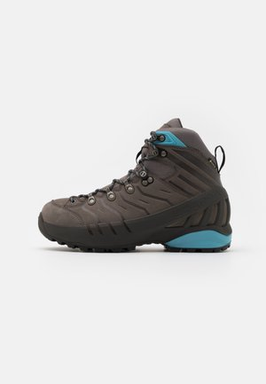 CYCLONE GTX  - Hiking shoes - gull gray/arctic