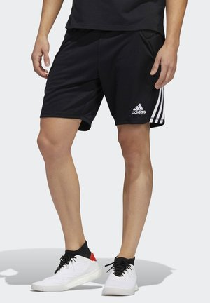 TIERRO GOALKEEPER SHORTS - kurze Sporthose - black