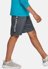 Under Armour - PROTOTYPE WORDMARK - Sports shorts - pitch gray - 2