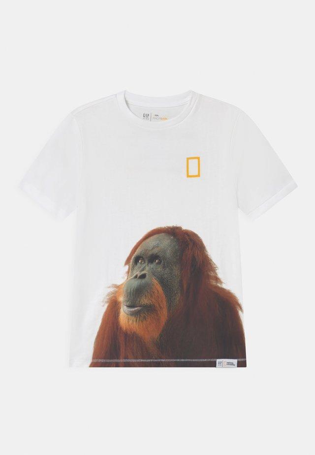 BOY NATIONAL GEOGRAPHIC TIGER - T-shirt print - optic white