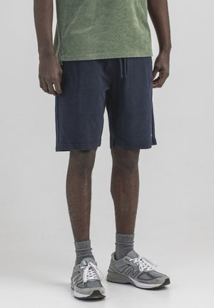 Shorts - alaska blue
