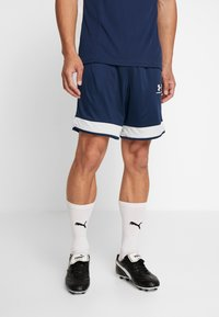 Under Armour - CHALLENGER SHORT - Sports shorts - academy/halo gray - 0