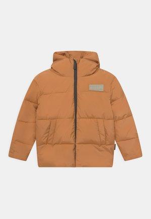 HALO UNISEX - Winter jacket - brown