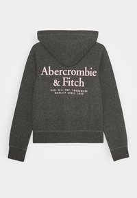 Abercrombie & Fitch - CORE - Hoodie met rits - heather grey - 1