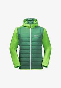 Jack Wolfskin - Soft shell jacket - leaf green - 3