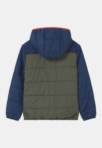 Jack Wolfskin - THREE HILLS UNISEX - Winter jacket - thyme green - 1
