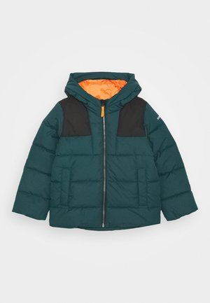 KERPEN JR - Winter jacket - antique green