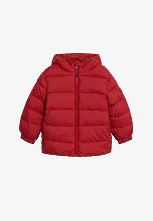 AMERICA - Winterjas - rouge