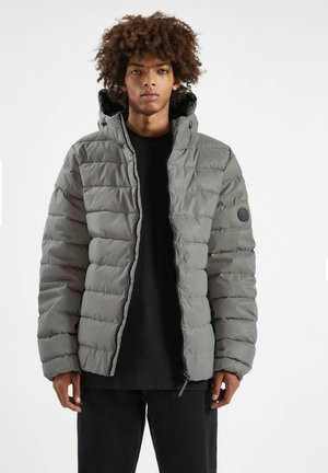 Winter jacket - metallic grey