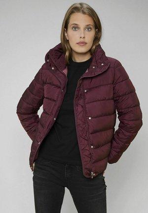WARM GEFÜTTERT ZBNPO - Winter jacket - rot