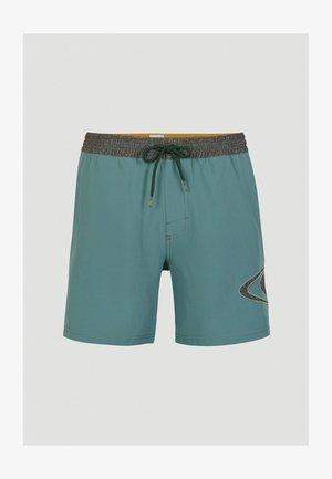 WORLD WAVE  - Swimming shorts - arctic