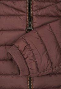 Calamar - Winter jacket - bordeaux - 3