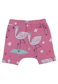 Walkiddy - CUTE FLAMINGO - Shorts - multicoloured - 1