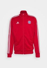 FC BAYERN MÜNCHEN - Club wear - true red