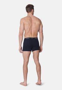 MARCUS - Roxy 5 Pack - Underkläder - dk.navy - 1