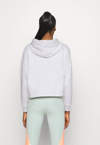 Tommy Hilfiger - CROPPED HOODY FLAG LOGO - Hoodie - ice heather - 2