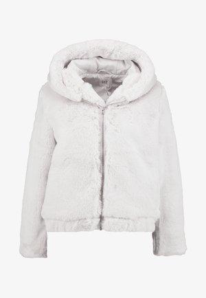 HOODED - Winter jacket - fog