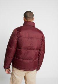 Hollister Co. - PUFFER MOCK BURG - Winter jacket - burgundy - 2