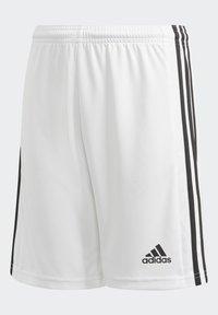 adidas Performance - SQUAD UNISEX - Krótkie spodenki sportowe - white - 2