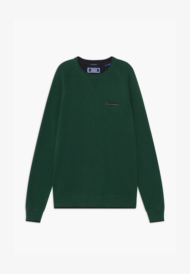JORJOES CREW NECK - Svetr - trekking green