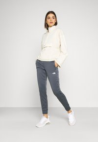 The North Face - PANT - Tracksuit bottoms - vanadis grey - 1