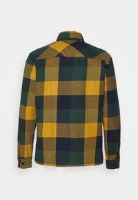 Selected Homme - SLHLOOSEREED CHECK - Shirt - ponderosa pine - 1