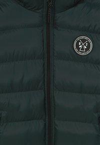 Cars Jeans - KIDS LENUX - Winter jacket - bottle - 6