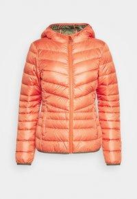 LIGHT PADDED JACKET - Light jacket - burnt coral