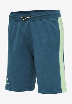 ACTION - Sports shorts - blue coral/green ash