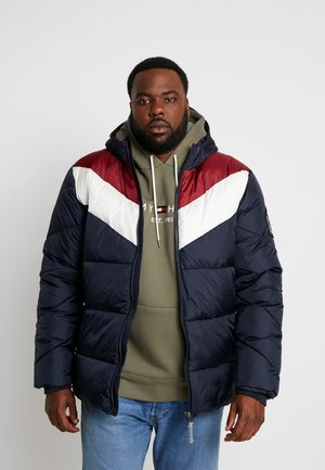 QUILTED JACKET HOOD - Winter jacket - navy
