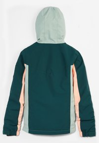 O'Neill - BLAZE JACKET UNISEX - Snowboard jacket - panderosa pine - 1