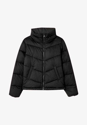 MIT ROLLKRAGEN - Winter jacket - black