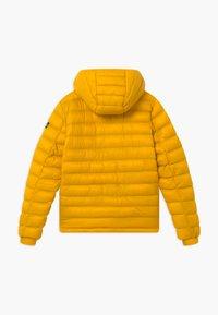 Petrol Industries - Winter jacket - amber - 1