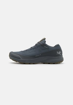 AERIOS FL GTX M - Hiking shoes - cinder/bushwack