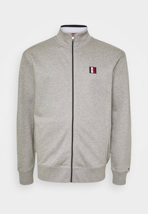 GLOBAL STRIPE ZIP THROUGH - Felpa aperta - grey