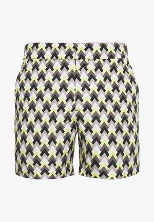 CLASSIC IPANEMA X-LARGE - Swimming shorts - navy/pistachio