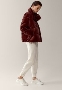 Massimo Dutti - Winter jacket - bordeaux - 1