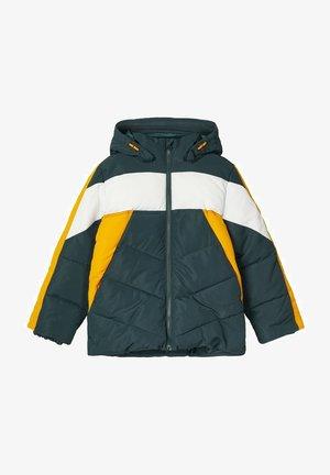 Winter jacket - darkest spruce