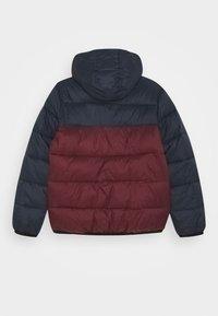 Element - ALDER AVALANCHE BOY - Zimní bunda - vintage red - 1