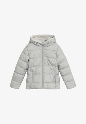 ALILUX7 - Winter jacket - gris chiné clair