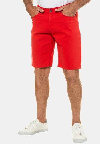 Shorts - salsa