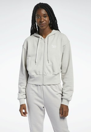 CLASSIC SMALL LOGO FULL ZIP FOUNDATION CASUAL HOODIE - Zip-up hoodie - grey