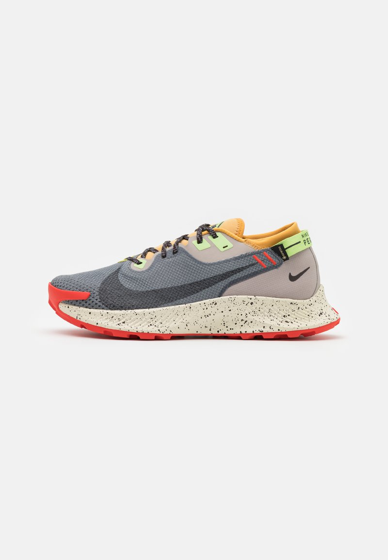 Nike Performance - PEGASUS TRAIL 2 GTX - Trail running shoes - smoke grey/black/bucktan/college grey