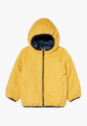 NMMMUMI JACKET  - Winter jacket - golden rod