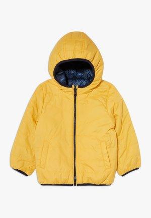 NMMMUMI JACKET  - Winter jacket - golden rod