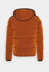 Calvin Klein - CRINKLE  - Winter jacket - brown - 1