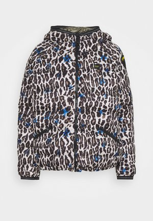 JACKET REVERSIBILE - Down jacket - multicolor