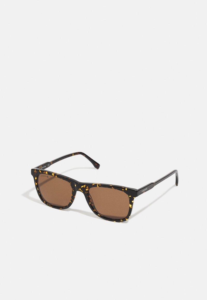Lacoste - UNISEX - Sunglasses - dark havana