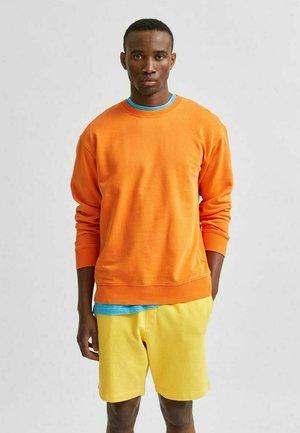SLHRELAXLUIS - Sweatshirt - puffins bill