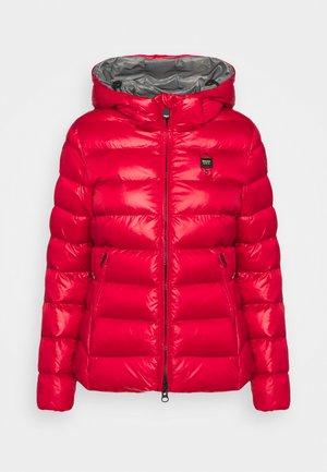 JACKET BICOLOR - Winter jacket - red